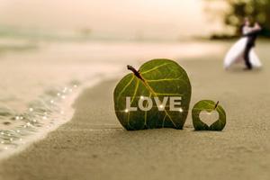Cuáles son los estados del amor